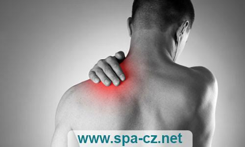 sections-physiotherapy