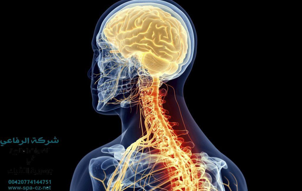 علاج التصلب اللويحي الاعراض التشخيص والعلاج
